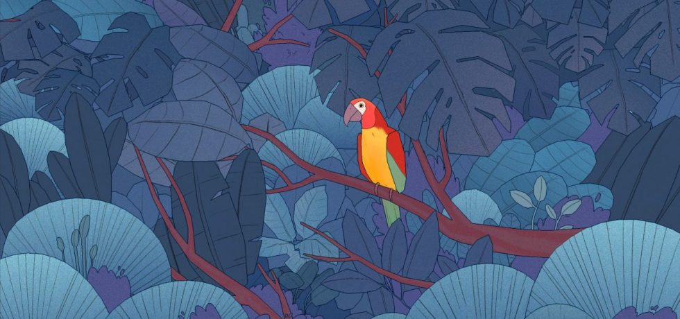 Bird Alone
